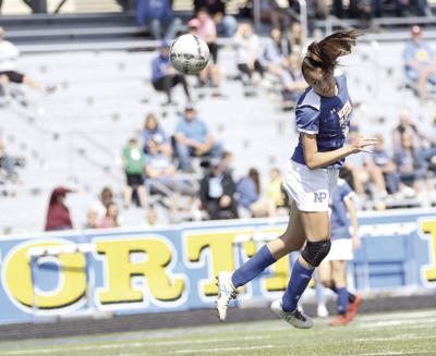 Telegraph Girls Soccer Player of the Year: Gracie Haneborg helped guide NP to the state semis as a sophomore, but the talented Bulldog has bigger goals in mind