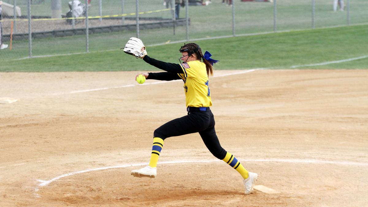 Dawgs hold their own defensively, but top pitcher in the state no-hits North Platte in state tournament