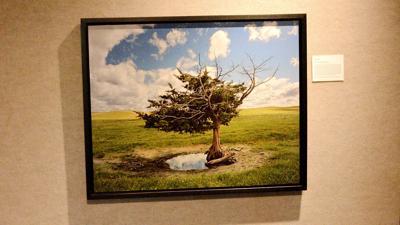 January Prairie Arts Center display highlights 'Life in Nebraska'