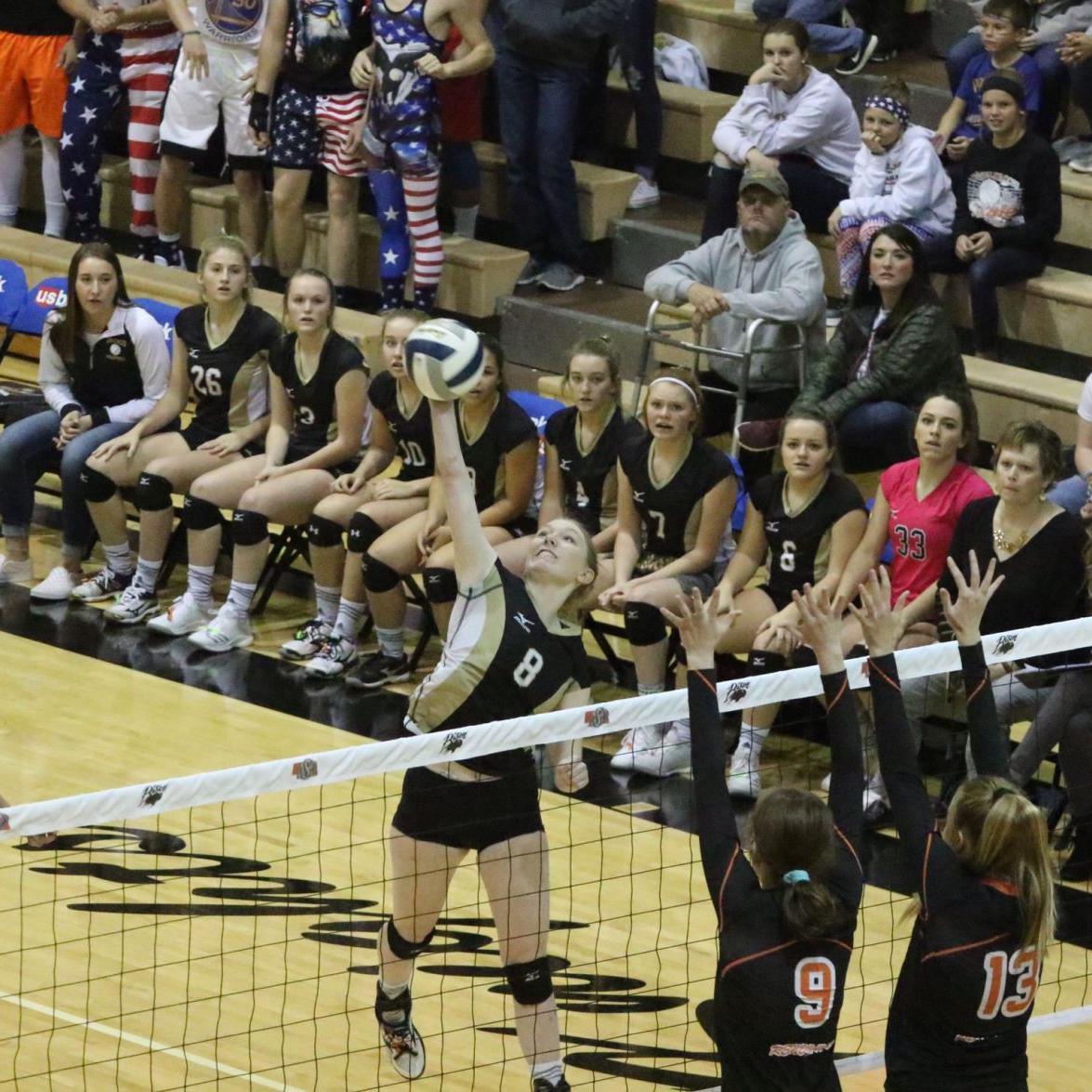 2018 Nebraska State Volleyball Tournament photo gallery