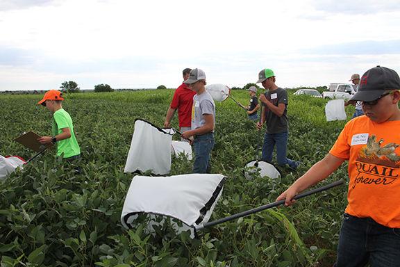 8-8 agronomy field day 2 web.jpg