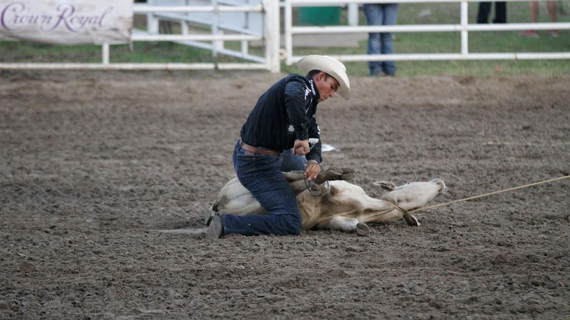 South Dakota man chases rookie title while competing at Buffalo Bill Rodeo