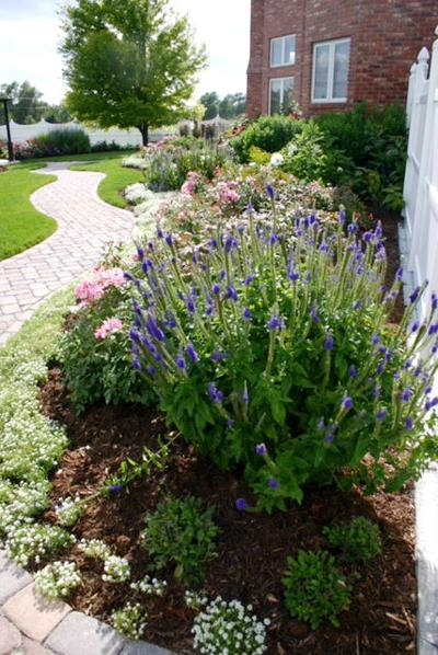 Using texture, color and form in your garden