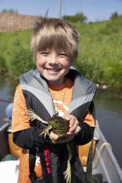 Outdoors: Bullfrog season has arrived