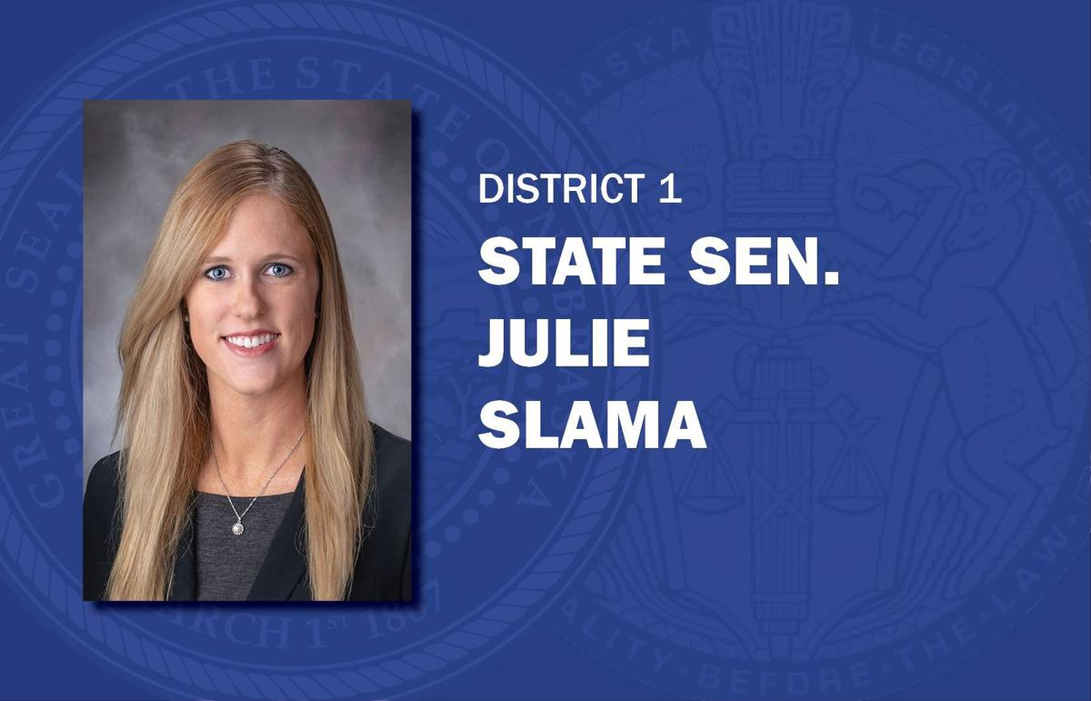 Julie Slama mug senators