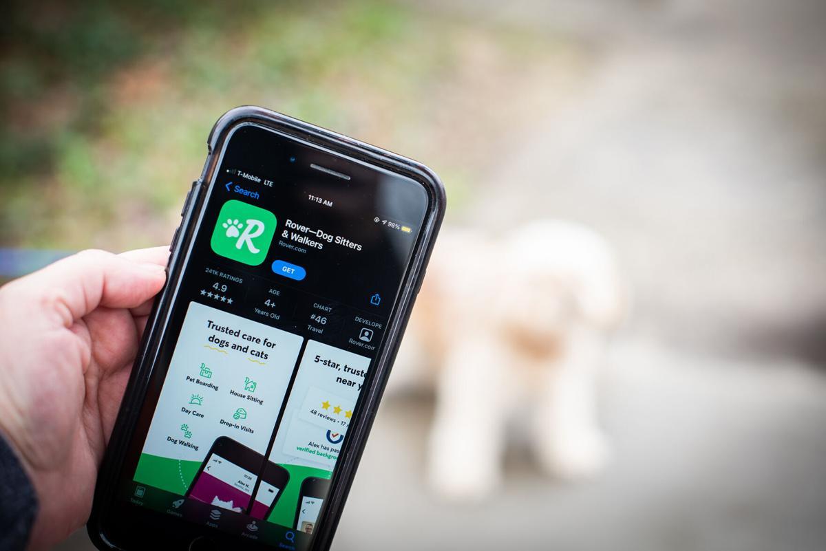 Rover dog-sitting app