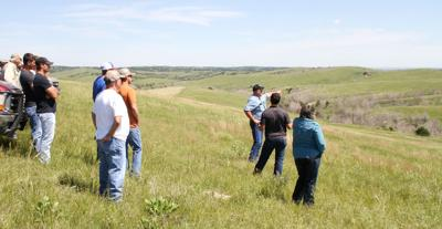 Ranch visitors learn about mob grazing and healthy pastures