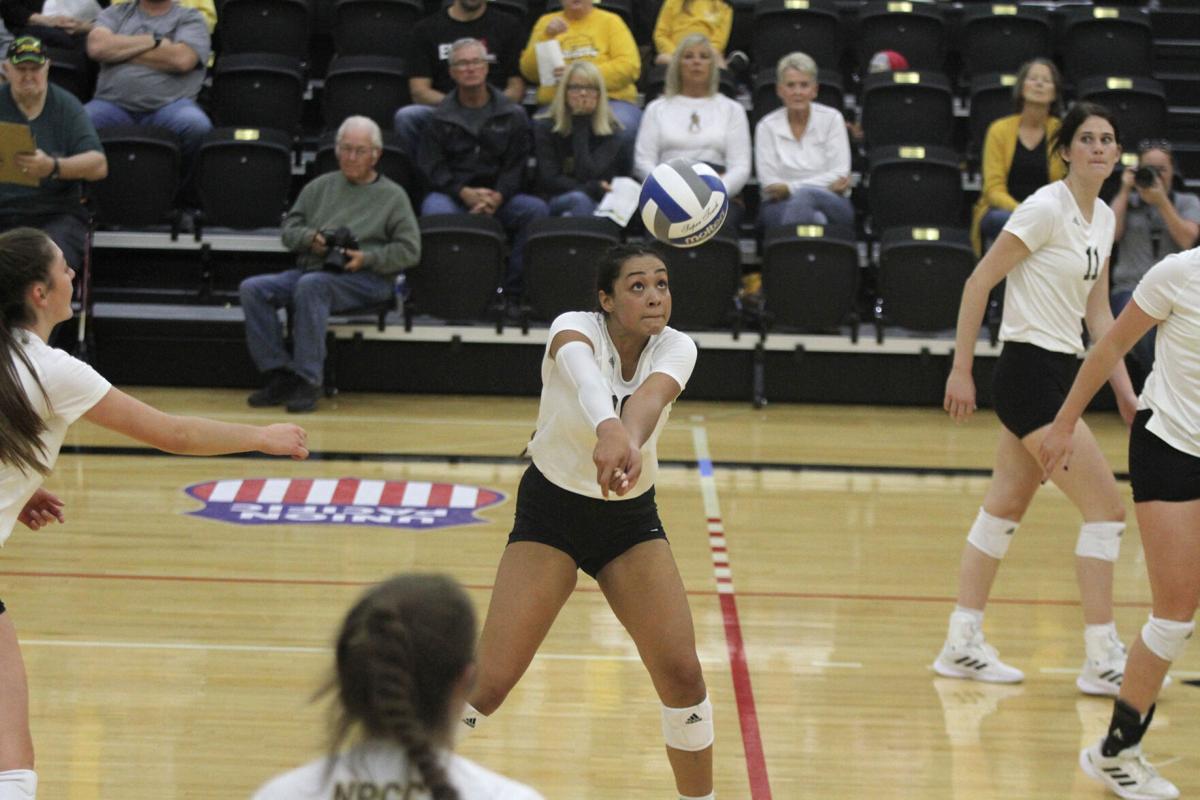 NPCC volleyball sweeps Northeastern