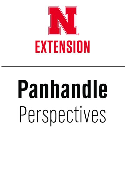 PANHANDLE PERSPECTIVES: Managing cows through dry conditions
