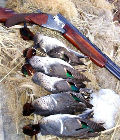 Windham: Can waterfowling be a deadly sport?
