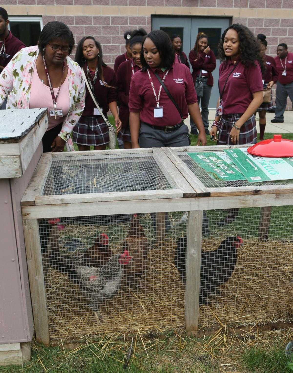 The students at Thea Bowman are working on an urban farm. They are raising chickens and eggs.