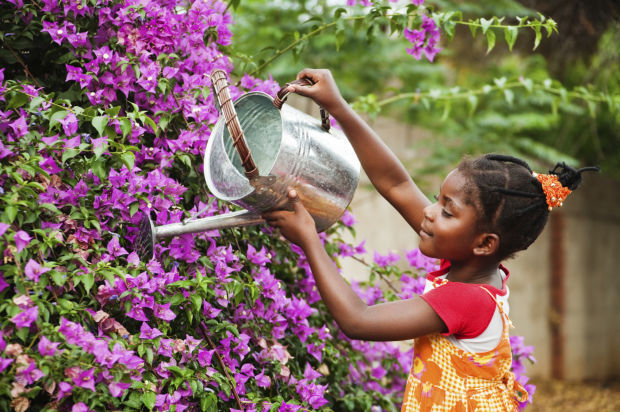 if children want to learn more about gardening and help out this spring remember to keep it fun and simple with easy to grow plants