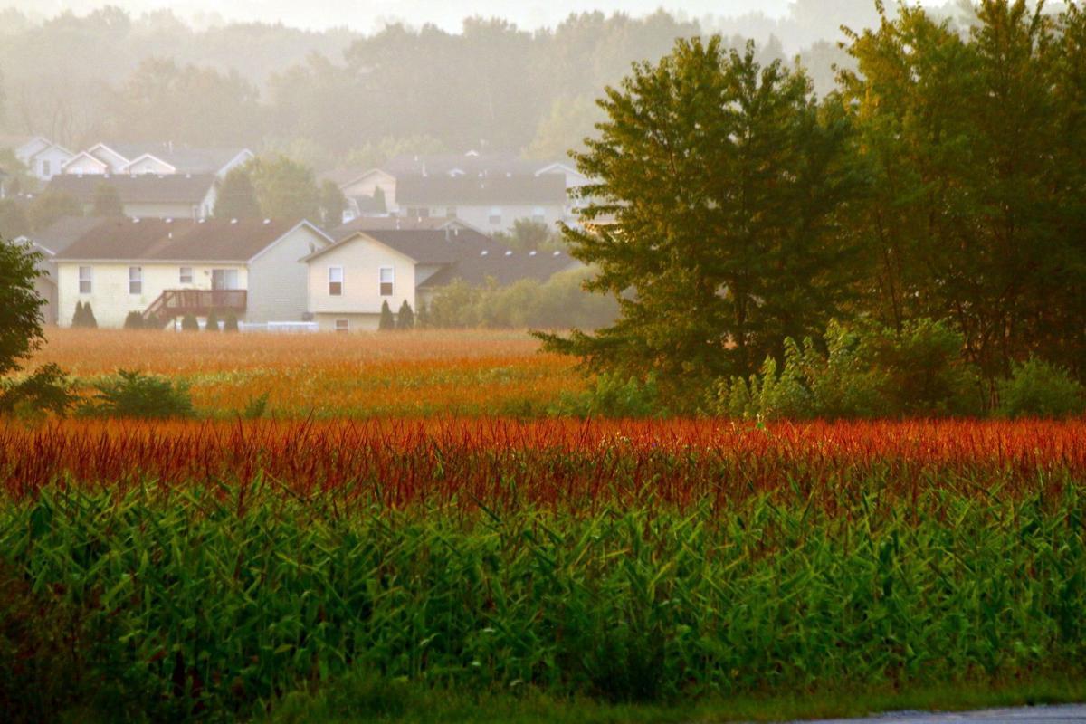 Rural subdivisions