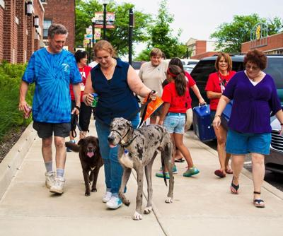 Lakeshore PAWS Pup Crawl 2016 planned