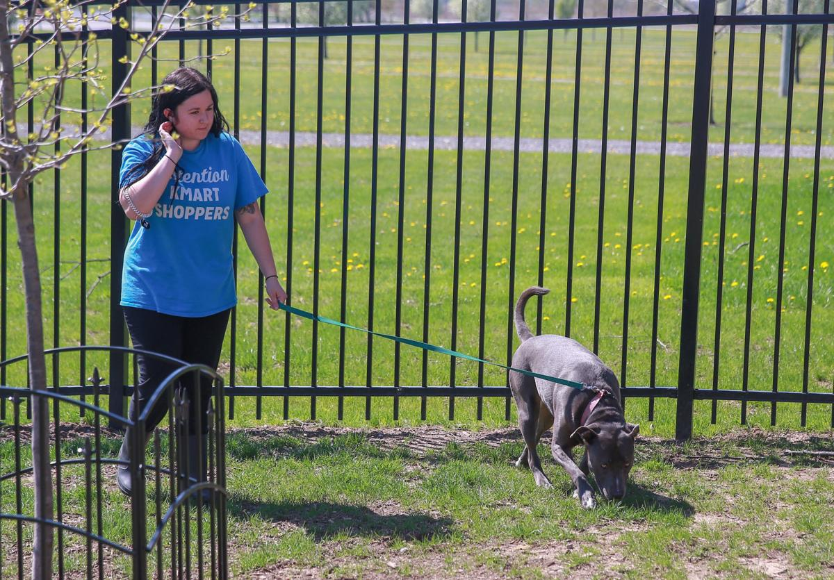 Area communities grappling with breed-specific legislation