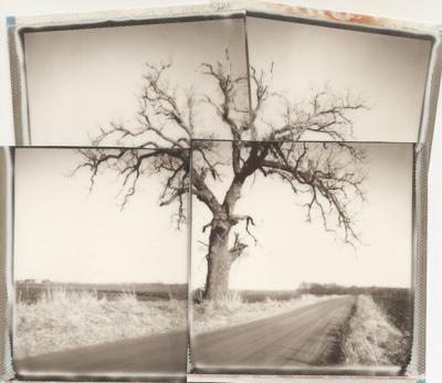 'Smushed' Polaroid exhibit coming to Miller gallery