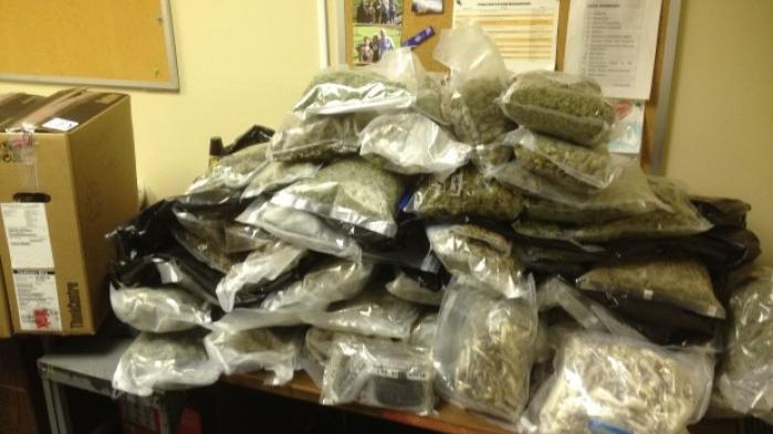 Marijuana psychedelic drugs found in laporte county home for Laporte newspaper