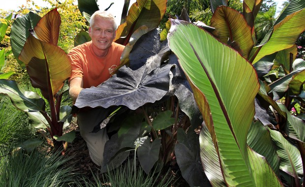 Gardens on the Prairie Owner Wayne Gruber with Exotic Plants - Tropical Trends For Backyard Beauty Home & Garden Nwitimes.com
