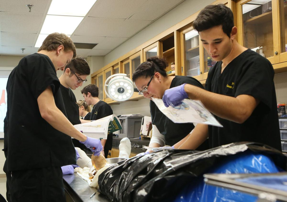 Purdue North Central students find cadaver work fascinating | News ...