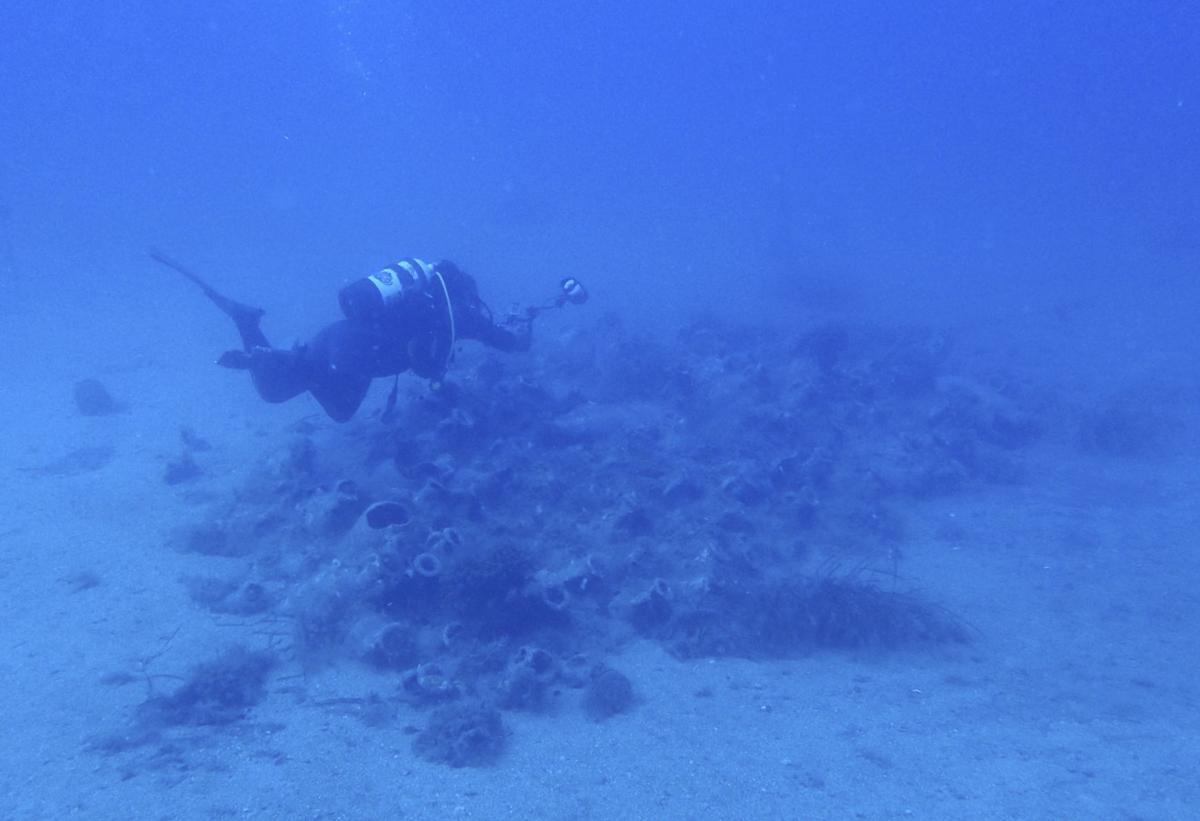 Albania Underwater Treasures