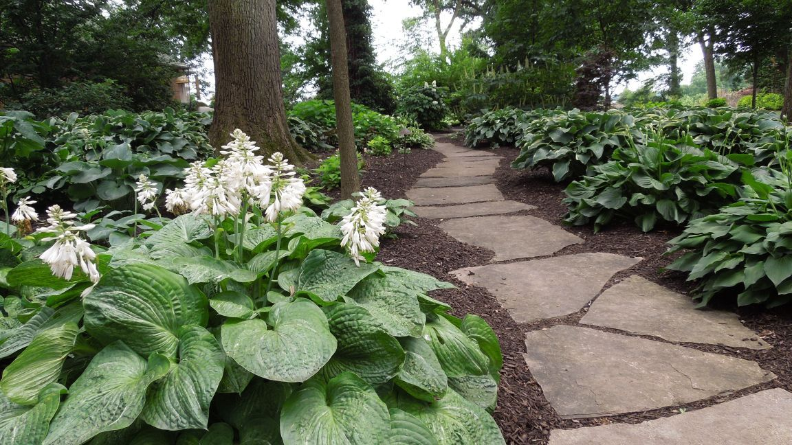 Happening in June: Garden walks sprout all over the Region   Home ...