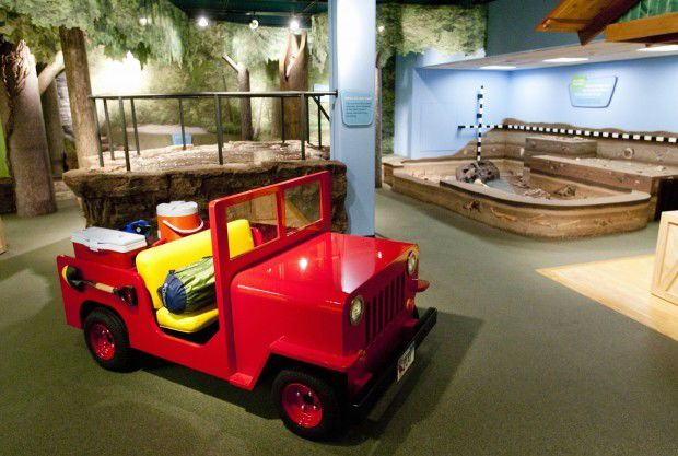 Illinois State Museum collecting COVID-19 stories