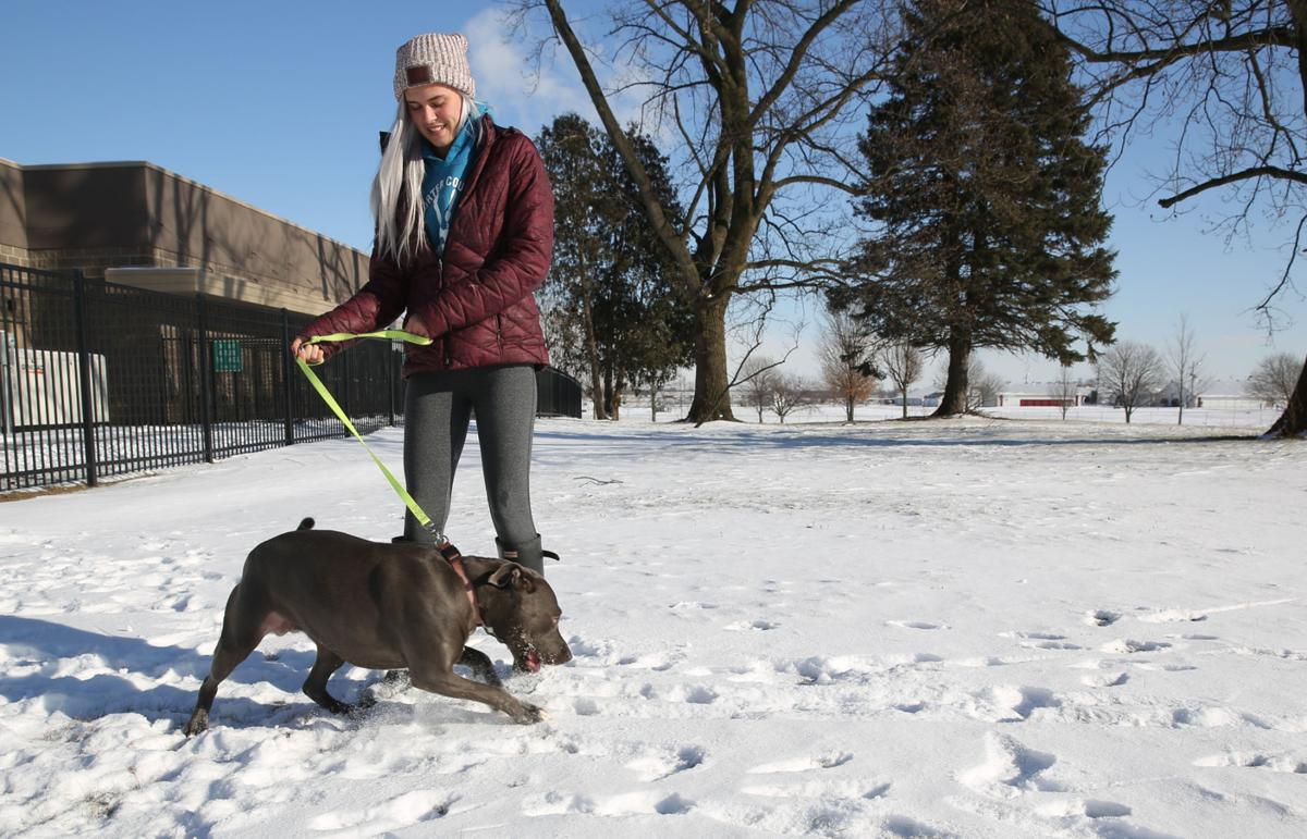 Veterinarian warns: 'If you're cold, your pets are cold'
