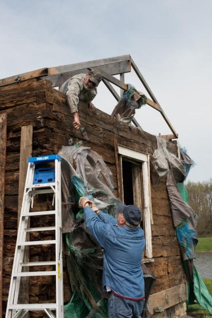 Linden log cabin ready for resurrection
