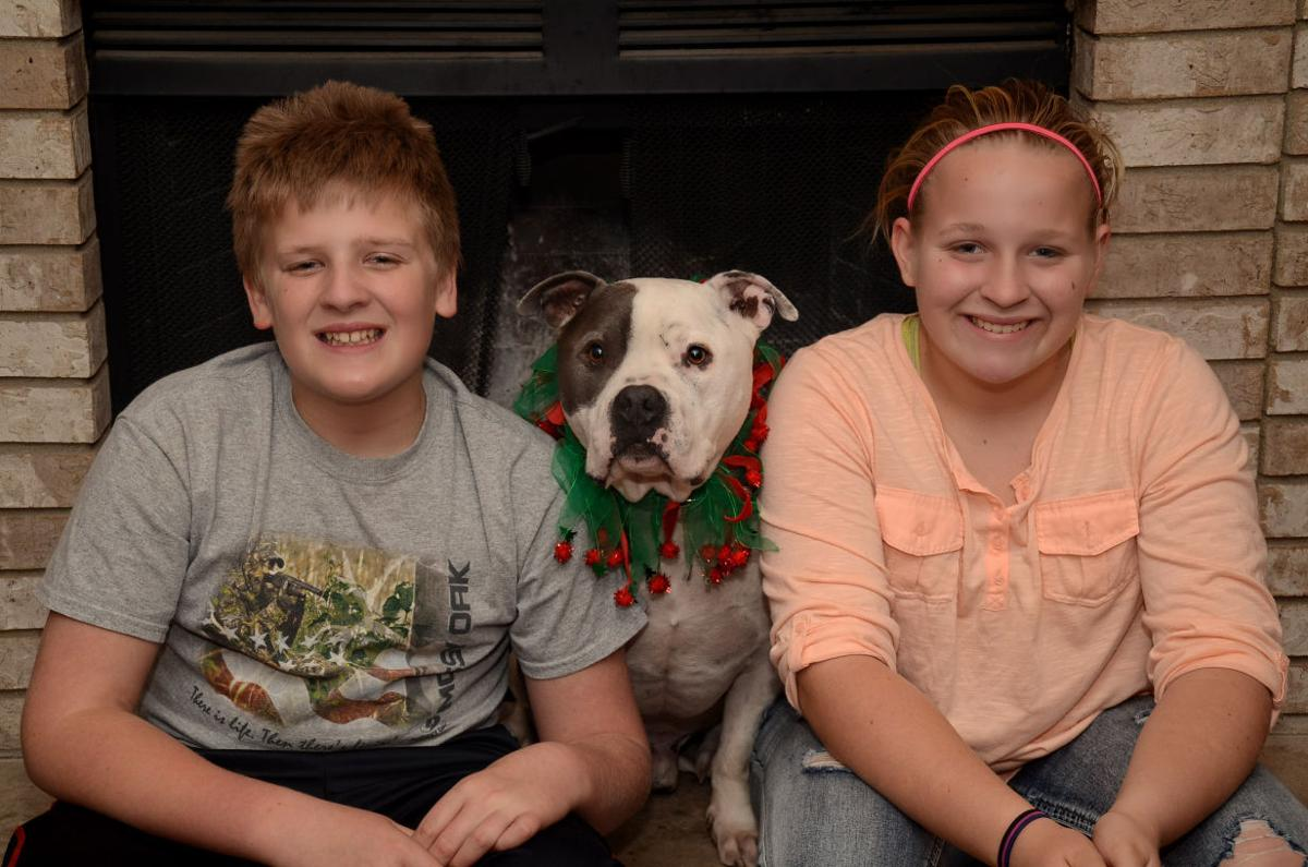 Give and receive the gift of family through pet adoption