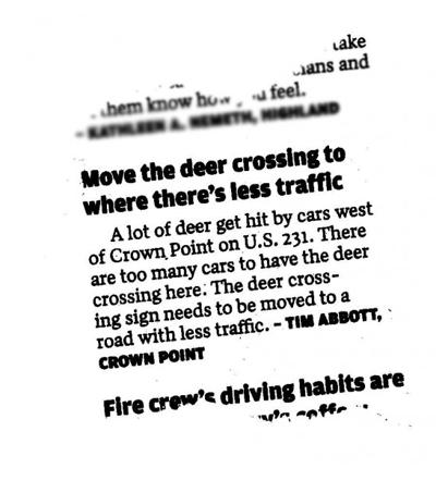 Deer crossing letter read 'round the world