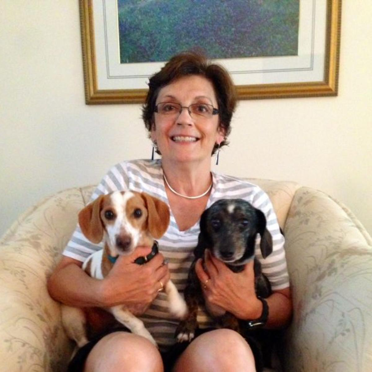 Pet adoption turns into volunteer mission for dachshund fan
