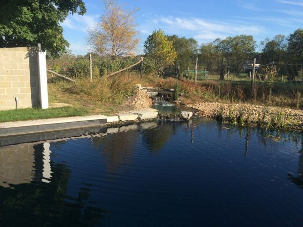 Swimming naturally: Tryon Farm builds an oasis in the wilds of Michigan City