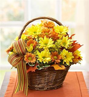 New products for thursday nov 8 2013 home and garden nwitimes basket of daisys from 1 800 flowers mightylinksfo