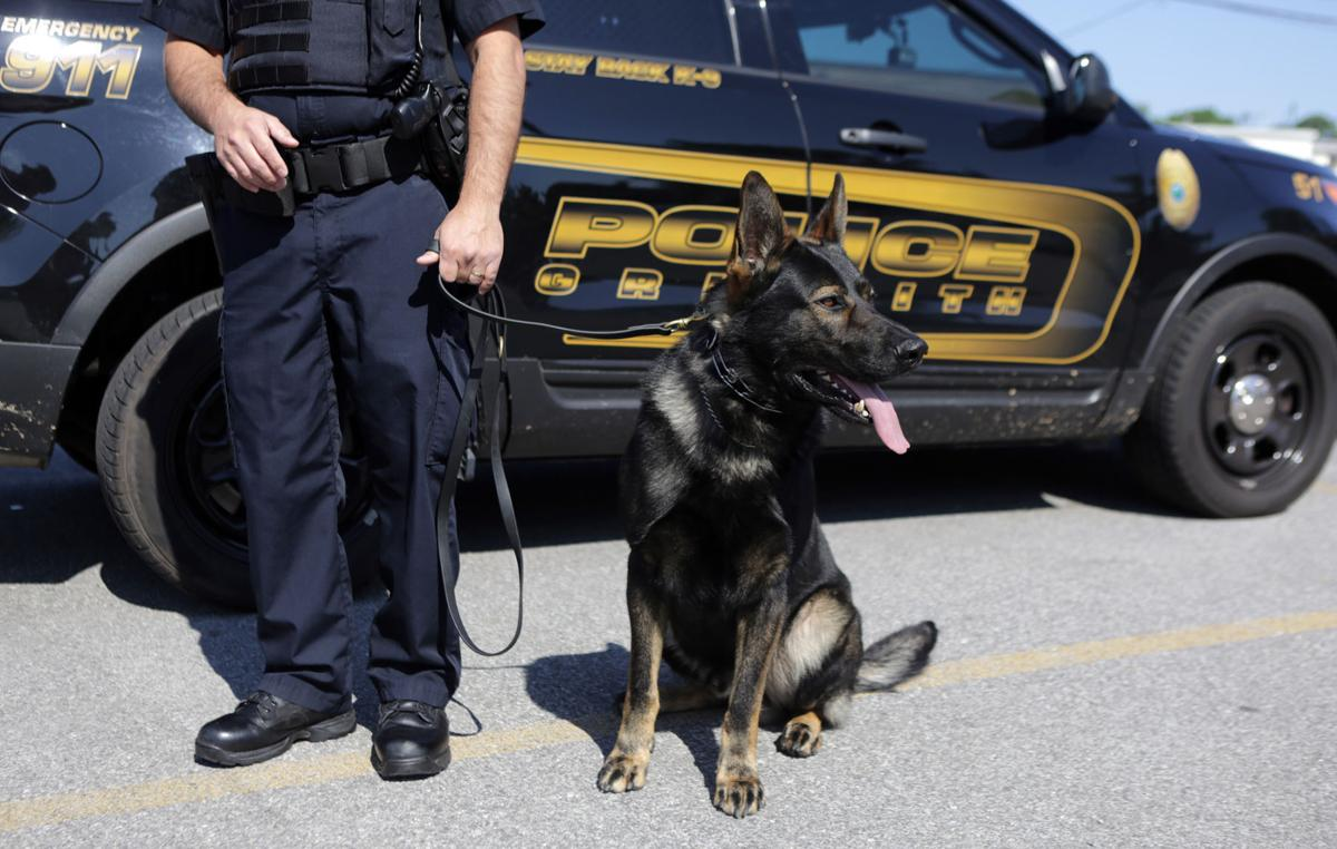 Griffith K-9 officer