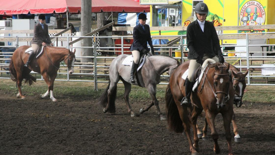 Humans, horses work as one at fair's western show | News | nwitimes com