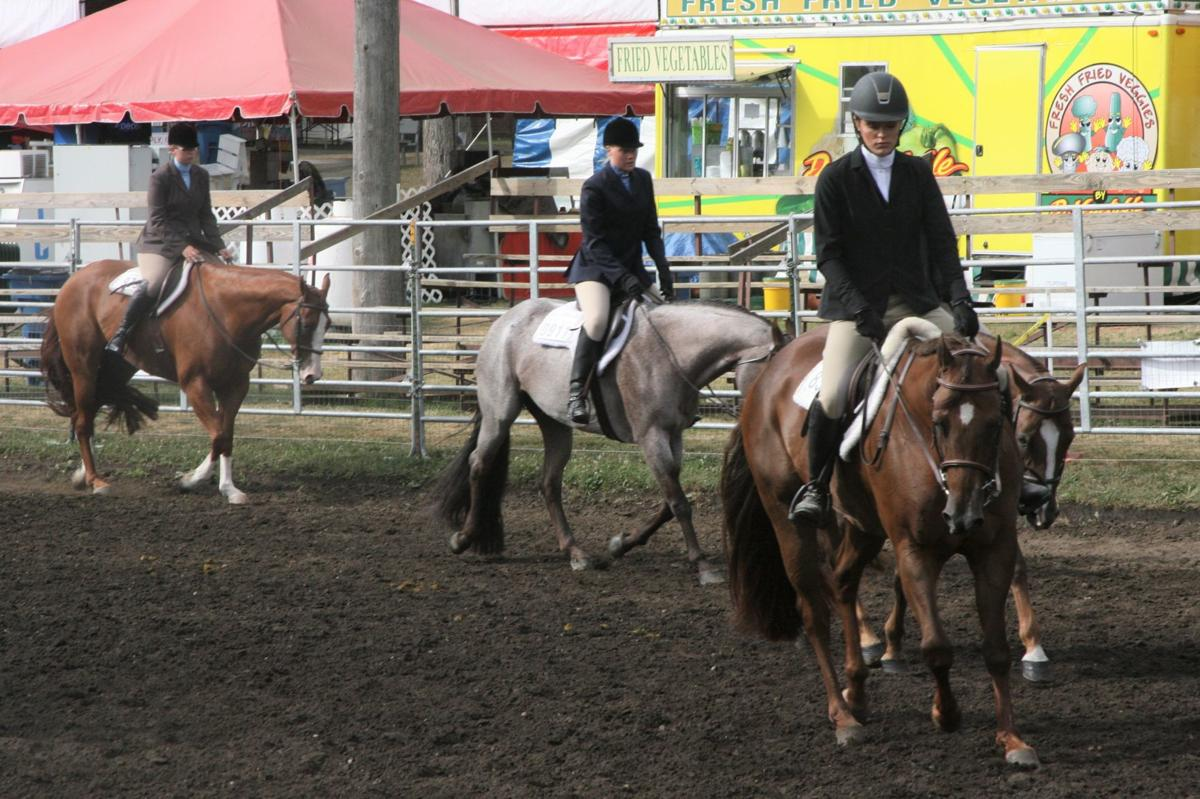 Humans, horses work as one at fair's western show