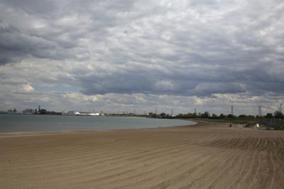 Jeorse Park Beach ecosystem restoration