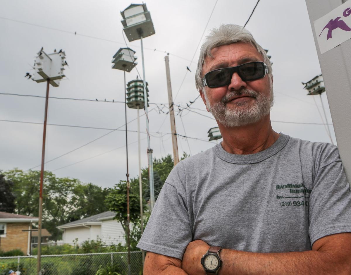 Gary Van Der Noord and the purple martins
