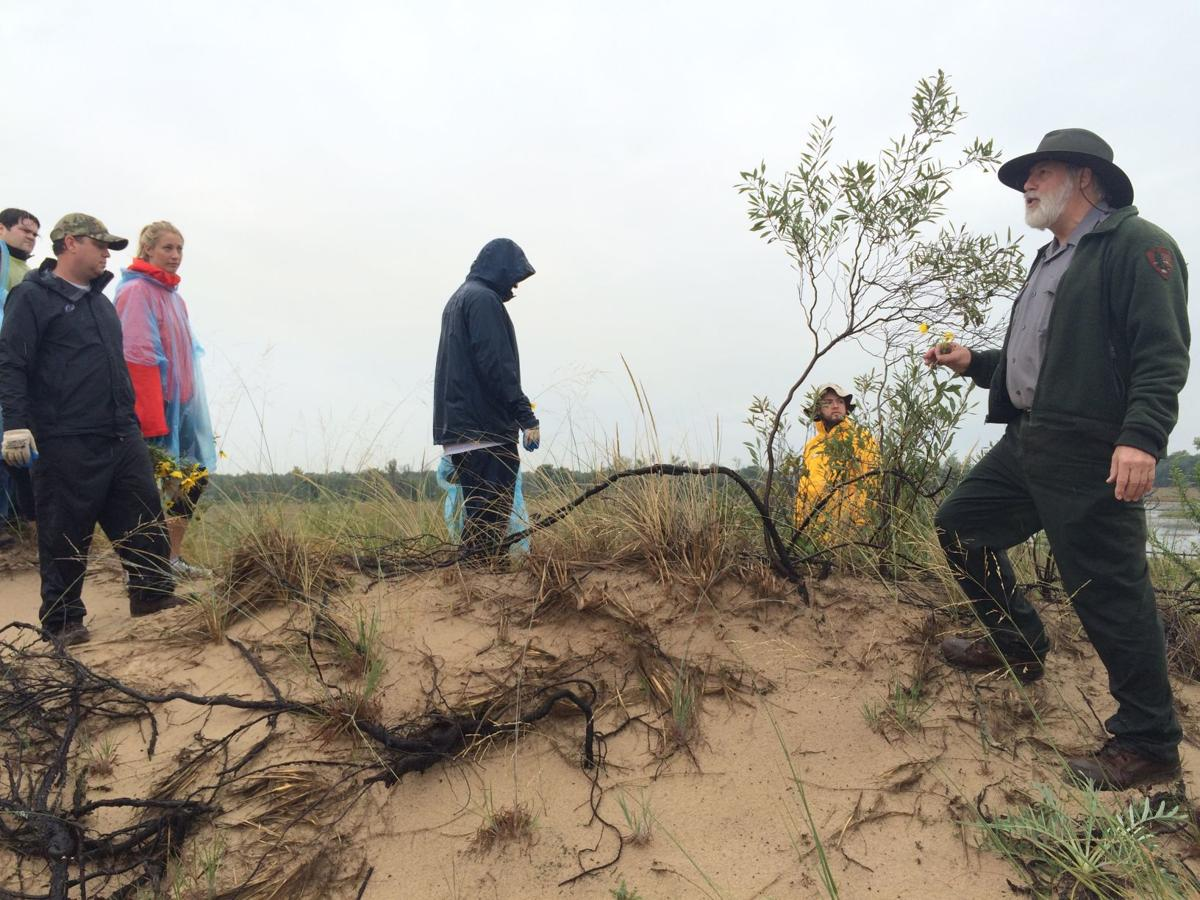 Volunteers clean up dunes