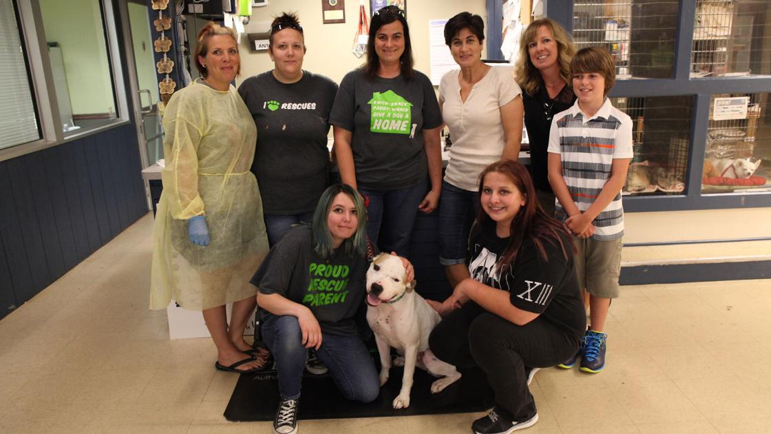 Alsip To The Rescue Provides A Safe Haven In St John Lifestyles Pets Nwitimes