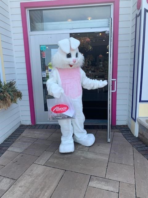 albanese candy bunny