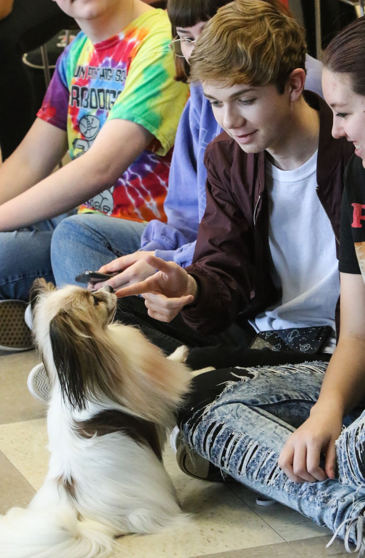 Therapy Dogs at Crown Point High School