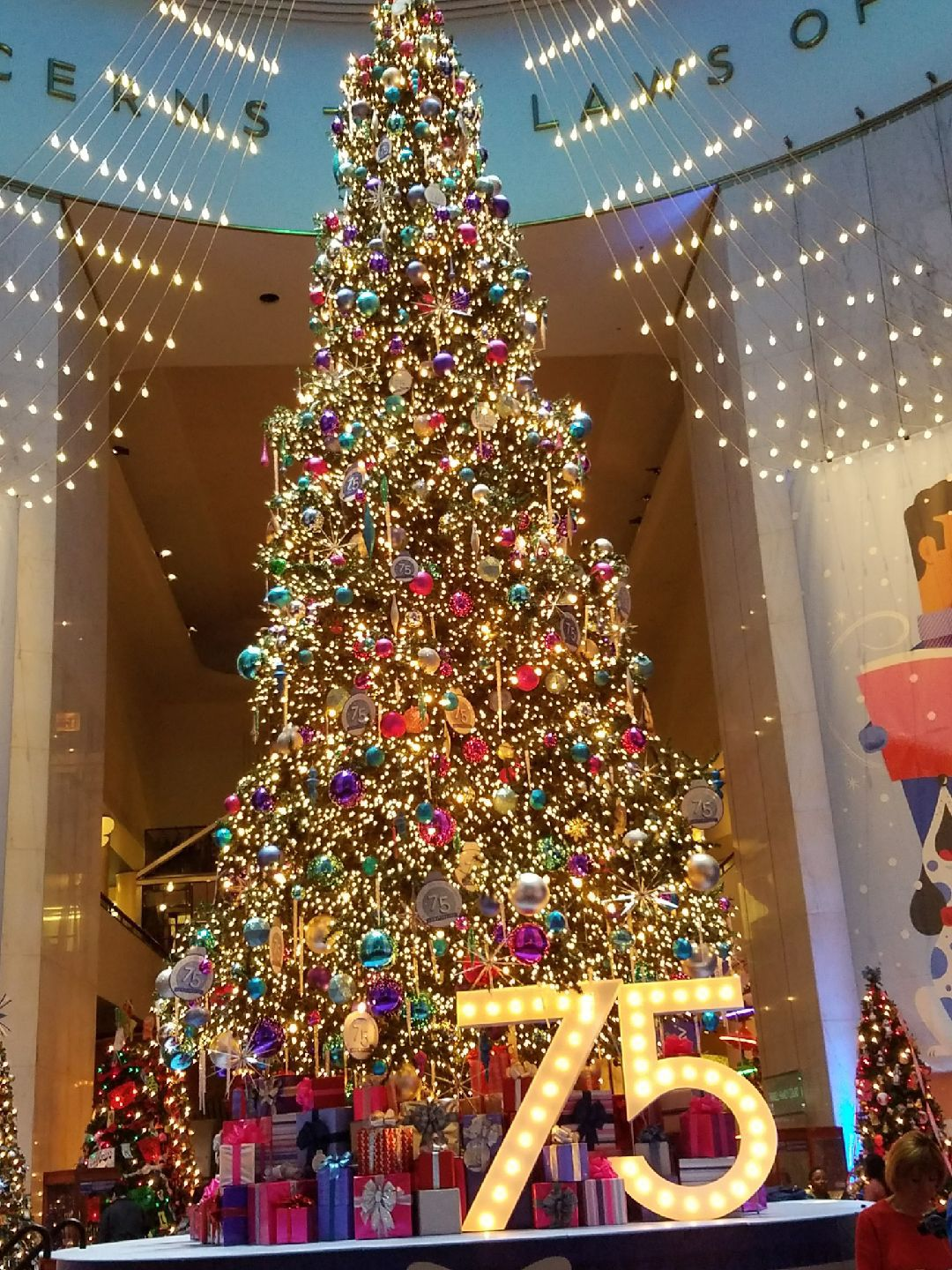 Trees aglow: Christmas Around the World, Holidays of Light star ...