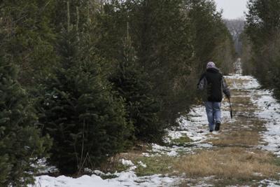 Luers Christmas Tree Farm