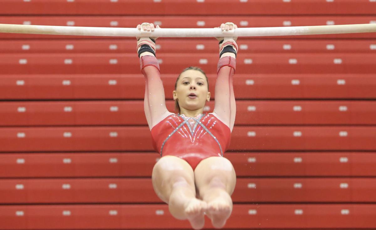 Portage Gymnastics Regional meet