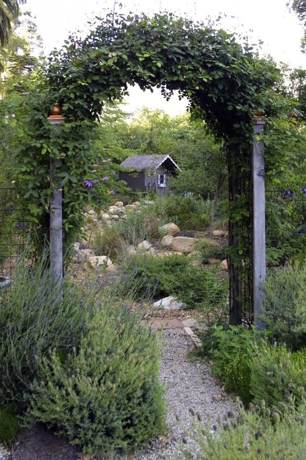 Secret Garden? Tips for creating backyard privacy : Home ...