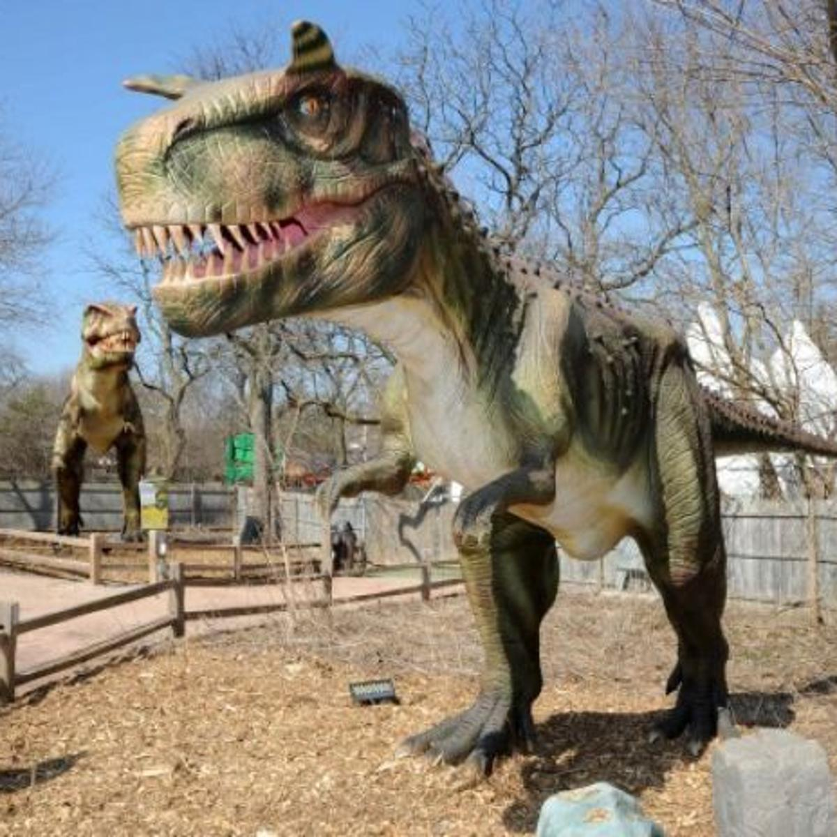 Tall Tails Brookfield Zoo Offers Family Excitement From Dining To Dinosaurs Destinations Nwitimes Com