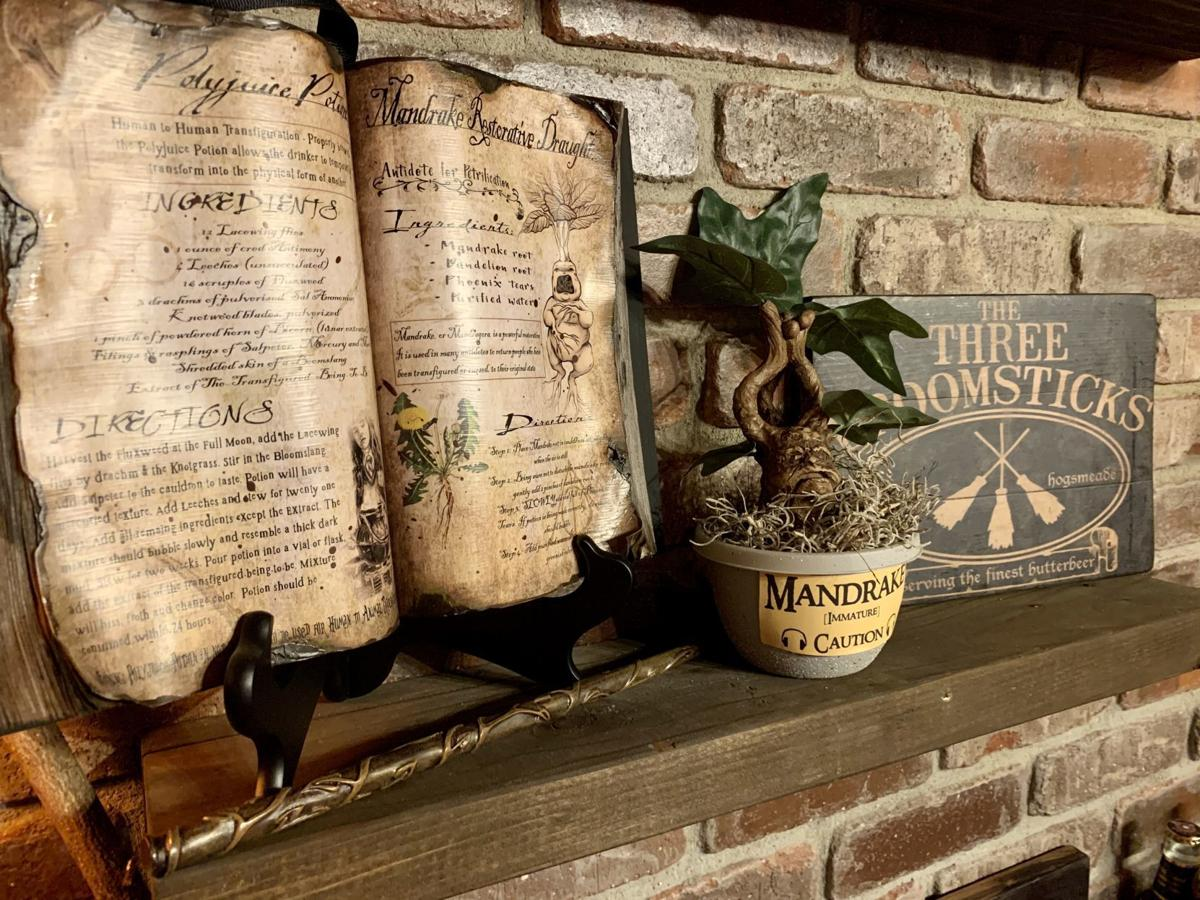 Region man conjures up Harry Potter basement bar for the ages