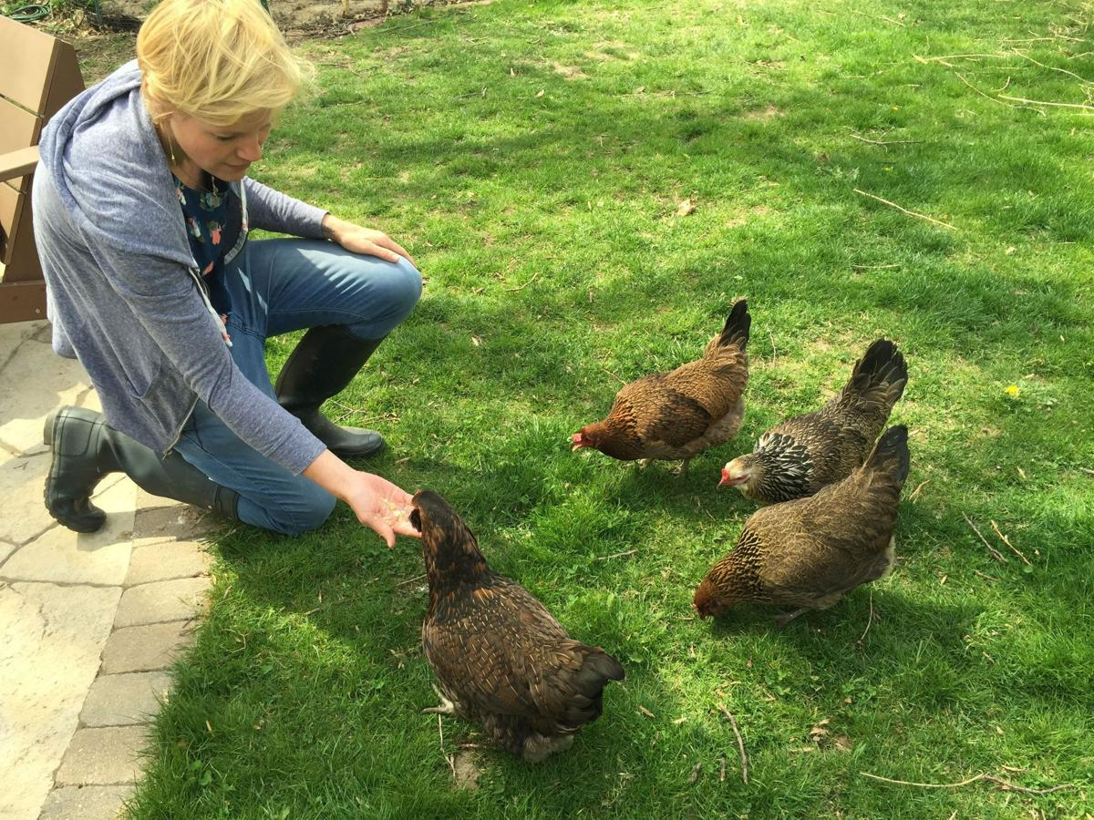 valpo family may lose their backyard chickens after complaint