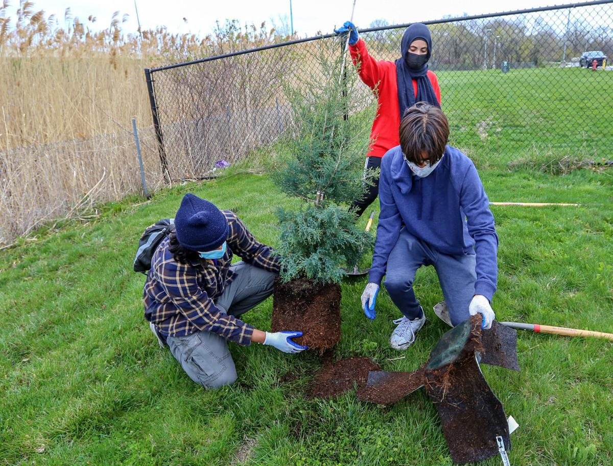 Volunteers plant trees for Earth Day